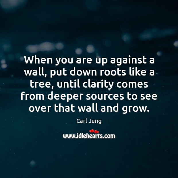 When you are up against a wall, put down roots like a Image