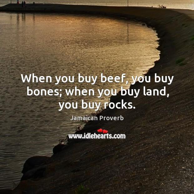 When you buy beef, you buy bones; when you buy land, you buy rocks. Jamaican Proverbs Image