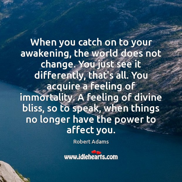 When you catch on to your awakening, the world does not change. Robert Adams Picture Quote