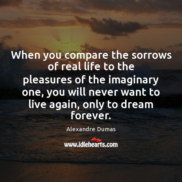 Image, When you compare the sorrows of real life to the pleasures of