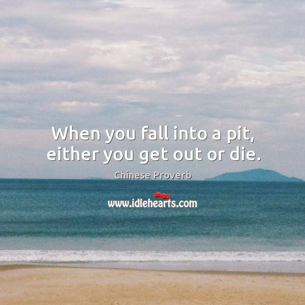 Image, When you fall into a pit, either you get out or die.