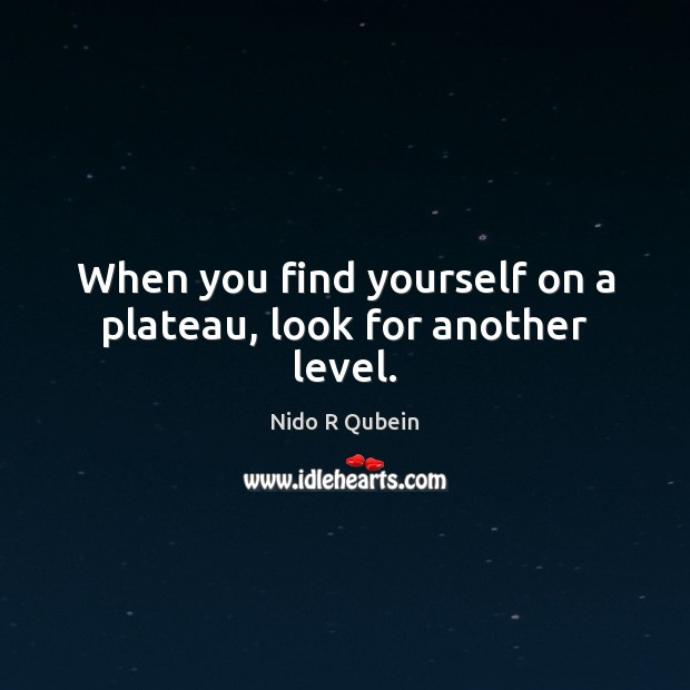 When you find yourself on a plateau, look for another level. Image