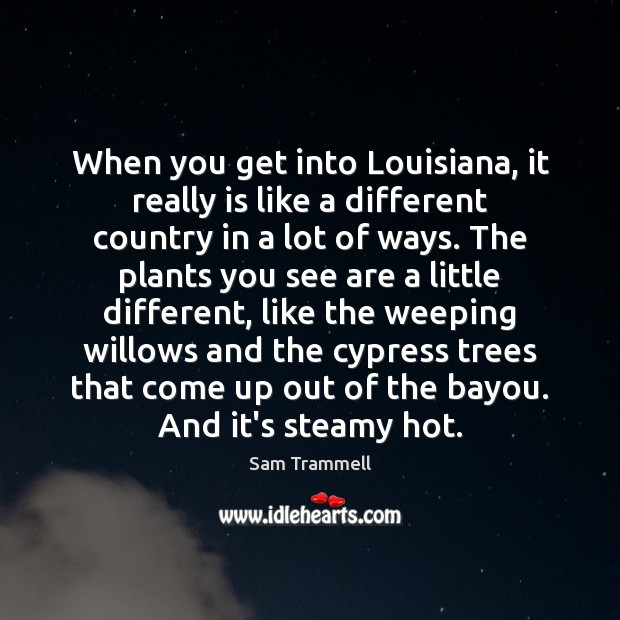 When you get into Louisiana, it really is like a different country Image
