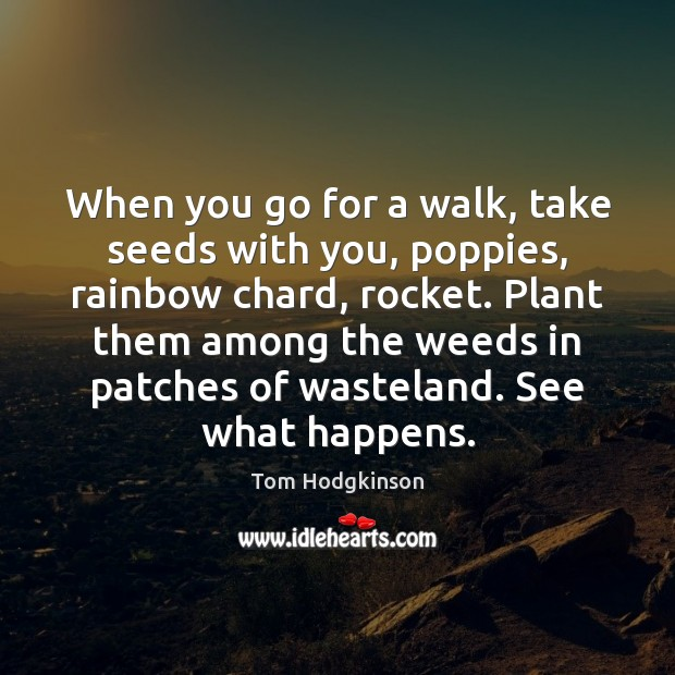 When you go for a walk, take seeds with you, poppies, rainbow Tom Hodgkinson Picture Quote