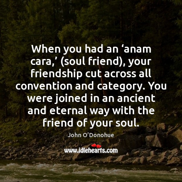 When you had an 'anam cara,' (soul friend), your friendship cut across John O'Donohue Picture Quote