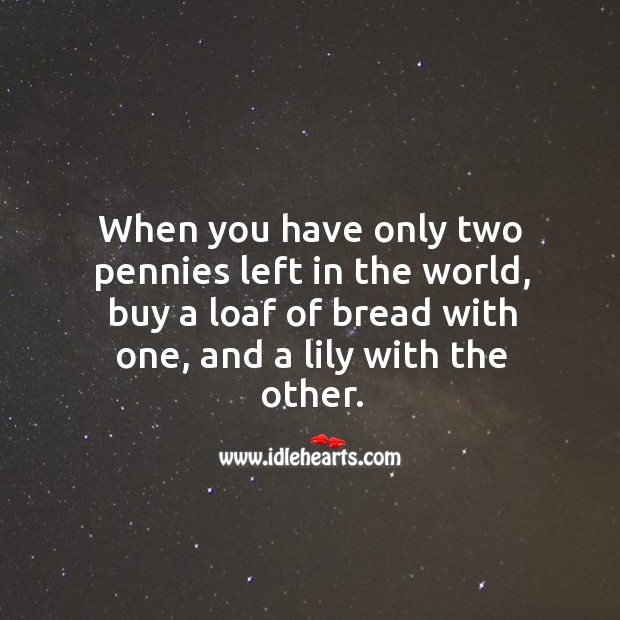 When you have only two pennies left in the world, buy a loaf of bread with one, and a lily with the other. Image