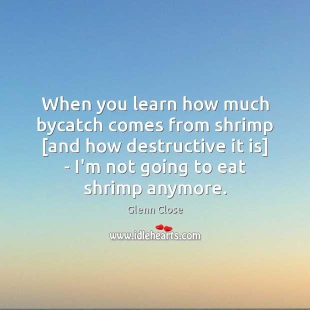 Image, When you learn how much bycatch comes from shrimp [and how destructive