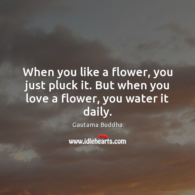 When you like a flower, you just pluck it. But when you love a flower, you water it daily. Image