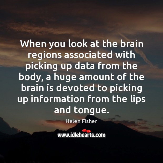 When you look at the brain regions associated with picking up data Helen Fisher Picture Quote