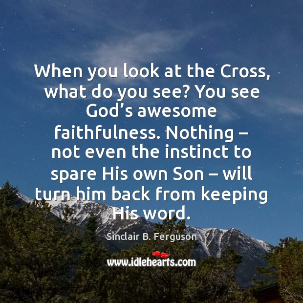 When you look at the Cross, what do you see? You see Sinclair B. Ferguson Picture Quote