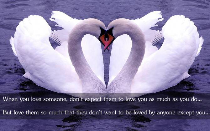 When You Love Someone, Don't Expect Them To Love You