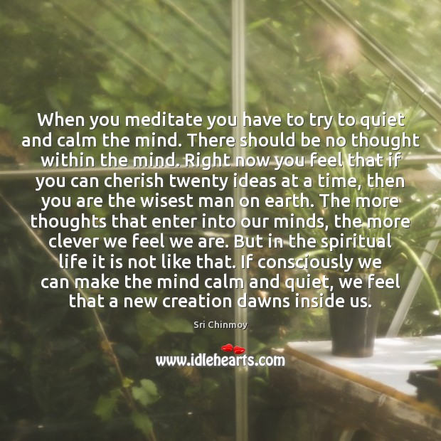 When you meditate you have to try to quiet and calm the Image