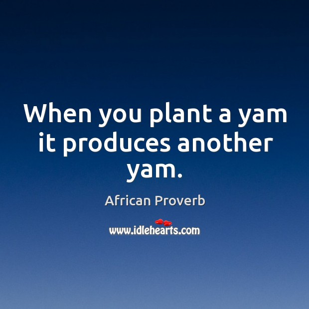 Image, When you plant a yam it produces another yam.