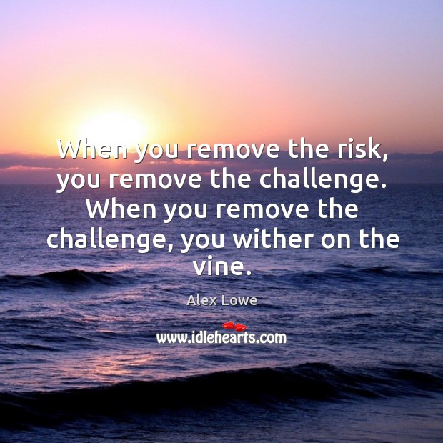 Image, When you remove the risk, you remove the challenge.