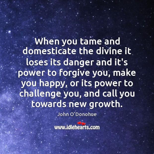 When you tame and domesticate the divine it loses its danger and John O'Donohue Picture Quote