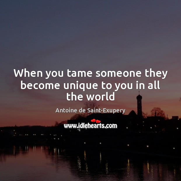 Image, When you tame someone they become unique to you in all the world