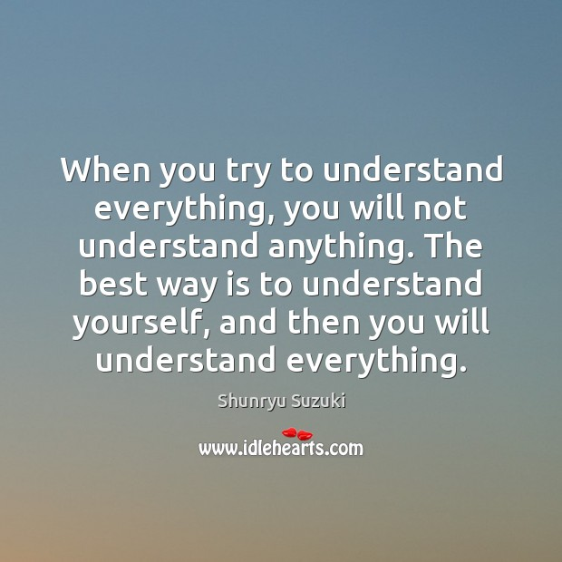 Image, When you try to understand everything, you will not understand anything. The