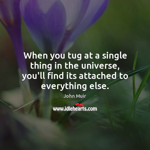 When you tug at a single thing in the universe, you'll find John Muir Picture Quote