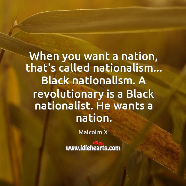 When you want a nation, that's called nationalism… Black nationalism. A revolutionary Image