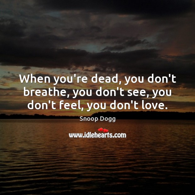 When you're dead, you don't breathe, you don't see, you don't feel, you don't love. Snoop Dogg Picture Quote