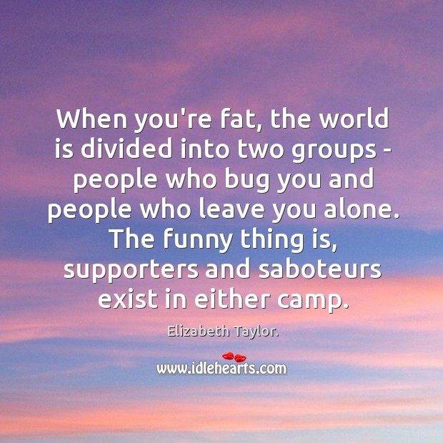 When you're fat, the world is divided into two groups – people Image