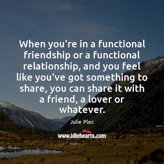 When you're in a functional friendship or a functional relationship, and you Julie Plec Picture Quote