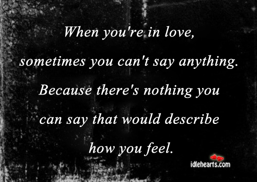 When You're In Love, Sometimes You can't Say Anything…