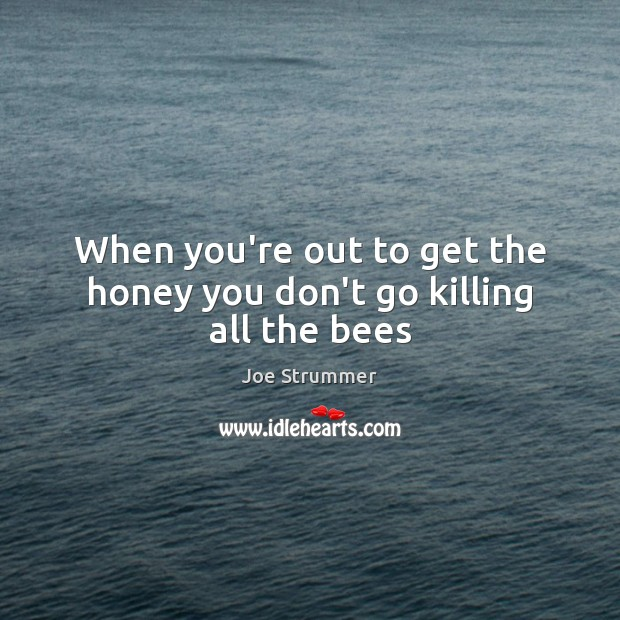 When you're out to get the honey you don't go killing all the bees Image