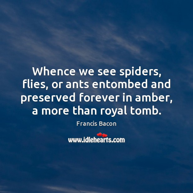 Image, Whence we see spiders, flies, or ants entombed and preserved forever in