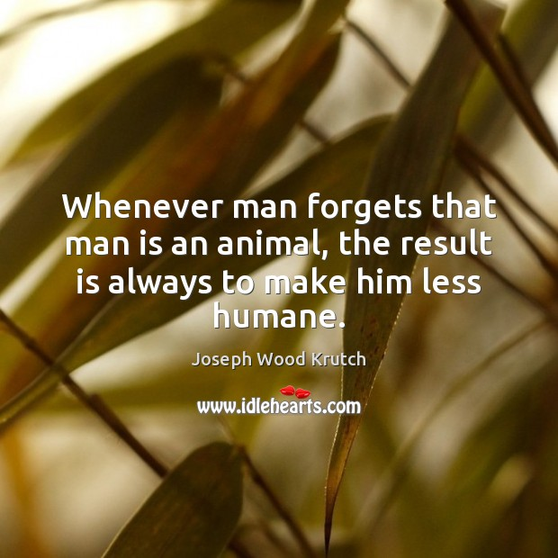 Whenever man forgets that man is an animal, the result is always to make him less humane. Joseph Wood Krutch Picture Quote