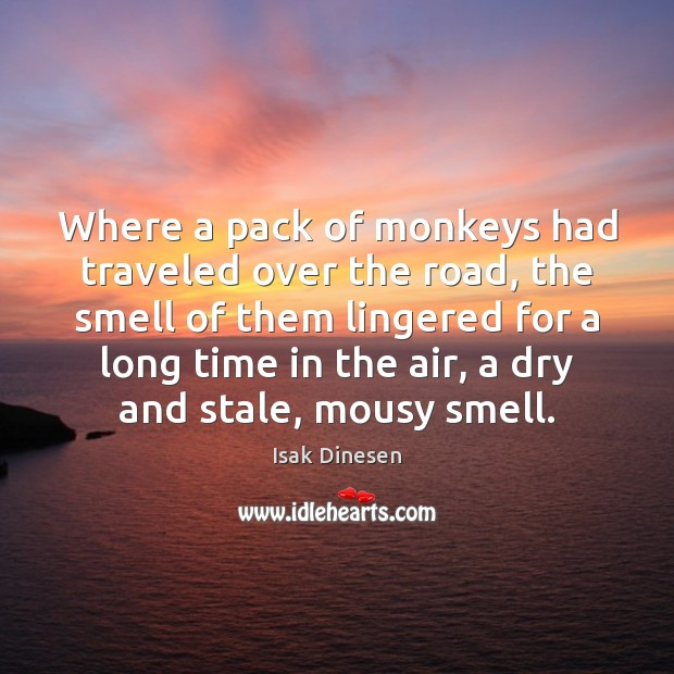 Where a pack of monkeys had traveled over the road, the smell Image