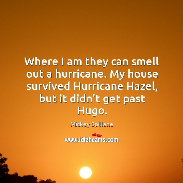 Where I am they can smell out a hurricane. My house survived hurricane hazel, but it didn't get past hugo. Image