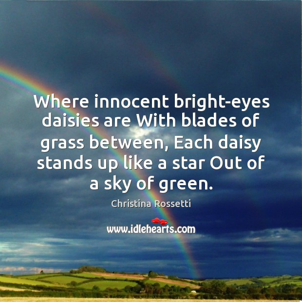 Where innocent bright-eyes daisies are With blades of grass between, Each daisy Christina Rossetti Picture Quote