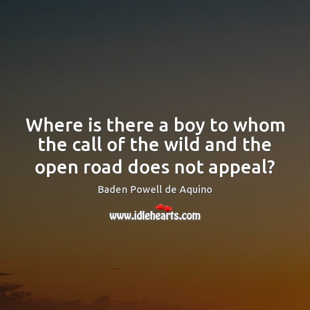 Where is there a boy to whom the call of the wild and the open road does not appeal? Image