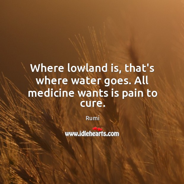 Image, Where lowland is, that's where water goes. All medicine wants is pain to cure.