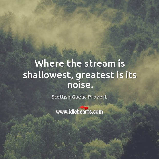Image, Where the stream is shallowest, greatest is its noise.