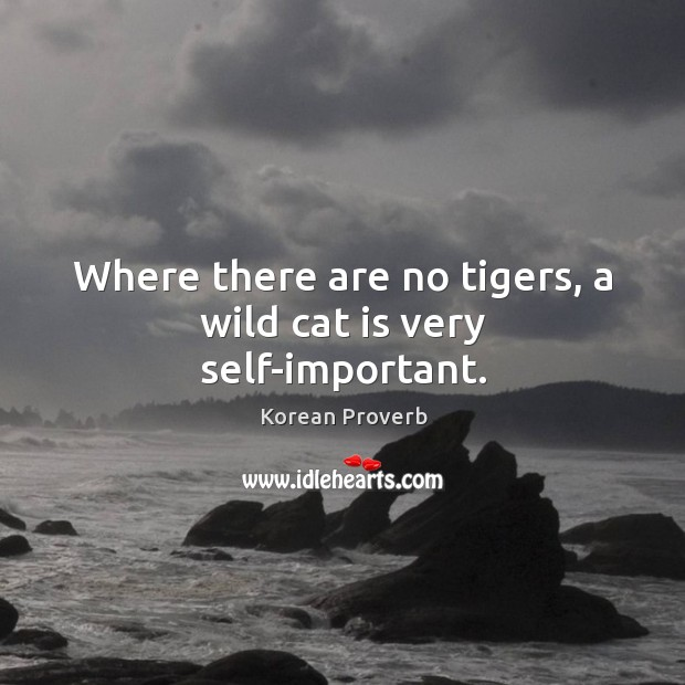 Where there are no tigers, a wild cat is very self-important. Korean Proverbs Image