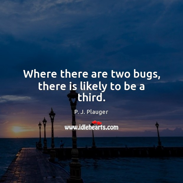 Where there are two bugs, there is likely to be a third. Image