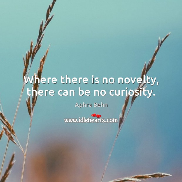 Image, Where there is no novelty, there can be no curiosity.