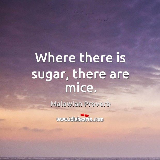 Where there is sugar, there are mice. Malawian Proverbs Image