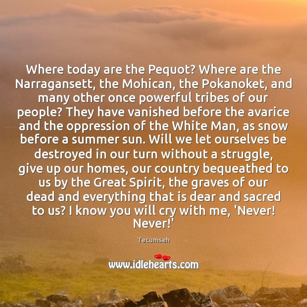 Where today are the Pequot? Where are the Narragansett, the Mohican, the Image