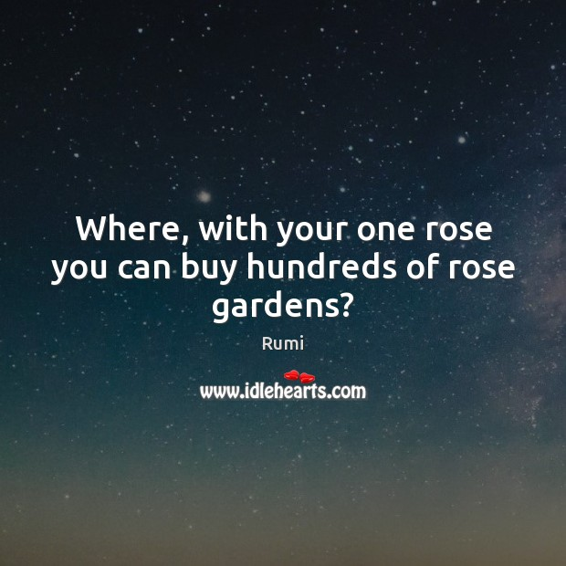 Image, Where, with your one rose you can buy hundreds of rose gardens?