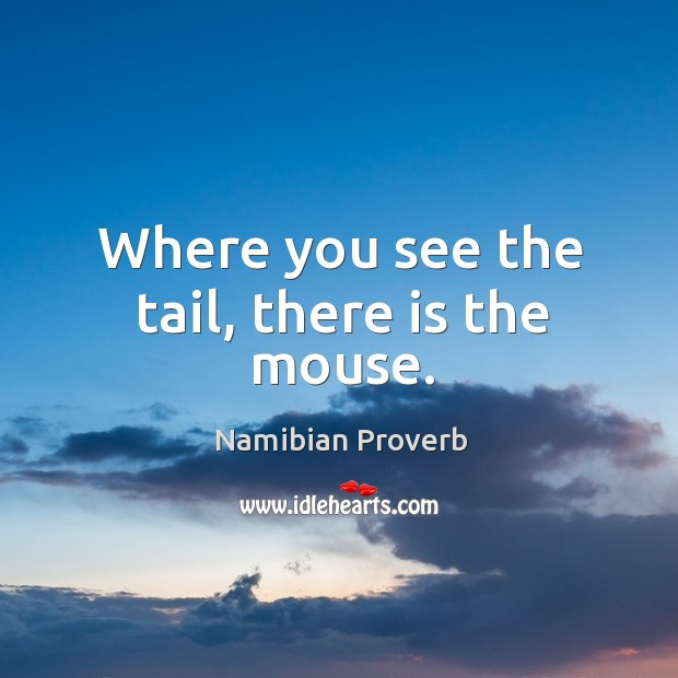 Where you see the tail, there is the mouse. Namibian Proverbs Image