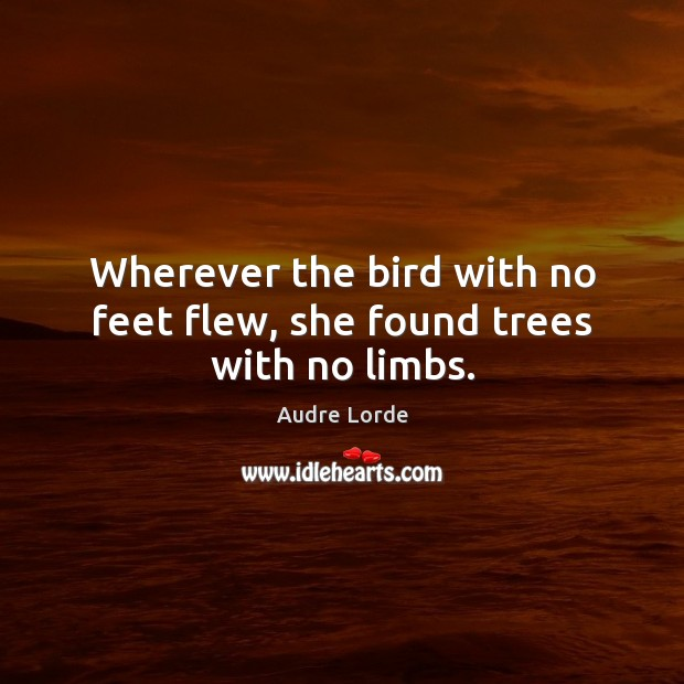 Wherever the bird with no feet flew, she found trees with no limbs. Audre Lorde Picture Quote