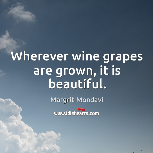 Wherever wine grapes are grown, it is beautiful. Image
