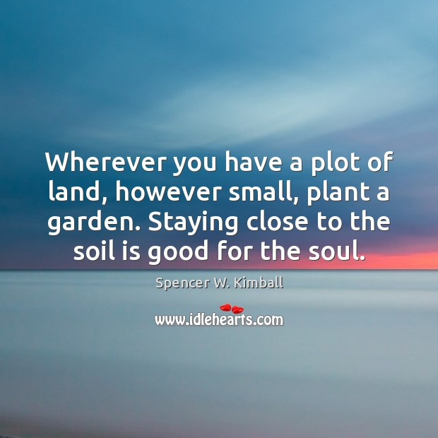 Image, Wherever you have a plot of land, however small, plant a garden.