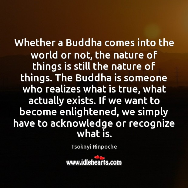 Whether a Buddha comes into the world or not, the nature of Tsoknyi Rinpoche Picture Quote