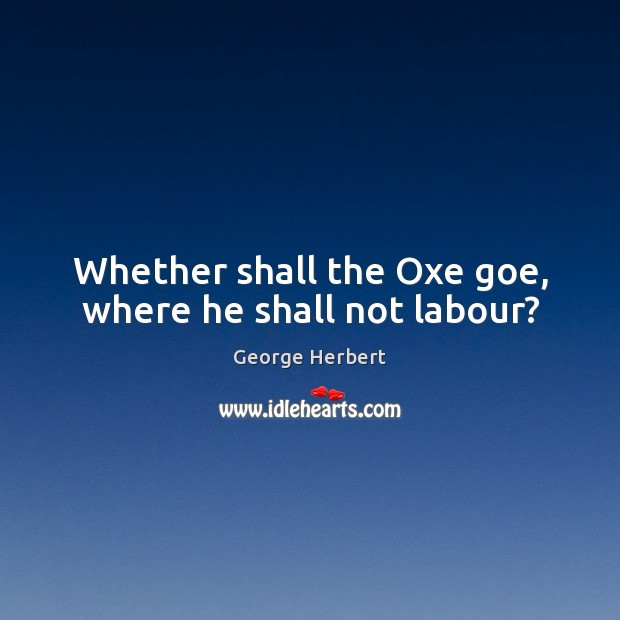 Whether shall the Oxe goe, where he shall not labour? Image