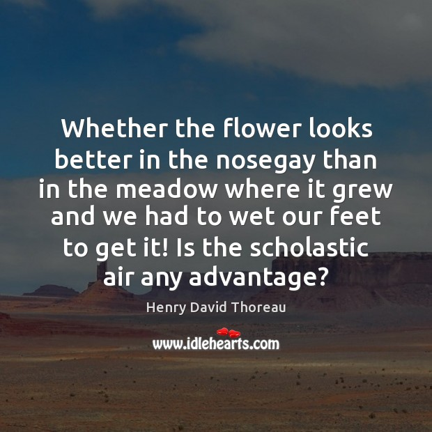 Whether the flower looks better in the nosegay than in the meadow Flowers Quotes Image