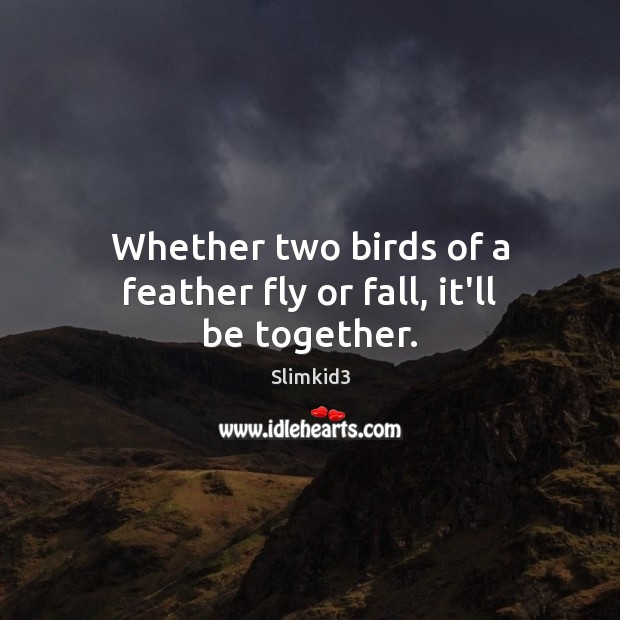 Whether two birds of a feather fly or fall, it'll be together. Image